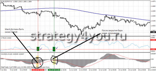 "Supplement Forex Strategy ""Antiflet"""